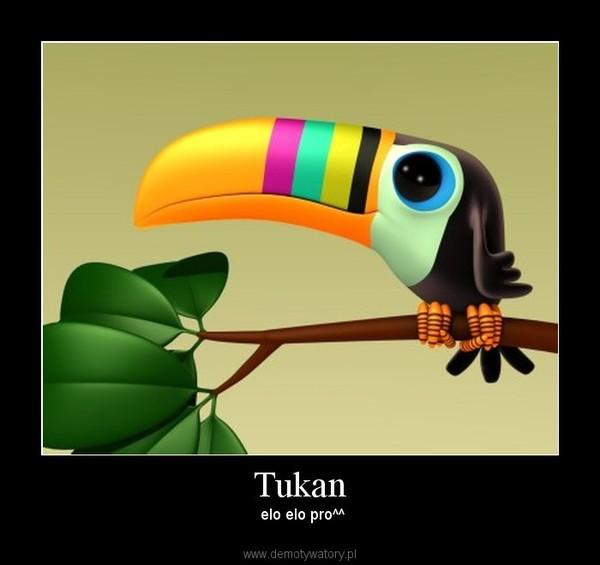 Tukan –  elo elo pro^^