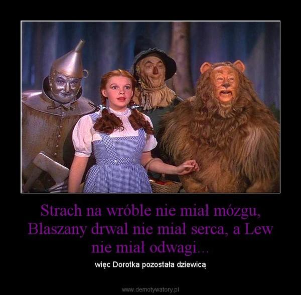Strach na wróble nie miał mózgu, Blaszany drwal nie miał serca, a Lew nie miał odwagi... – więc Dorotka pozostała dziewicą