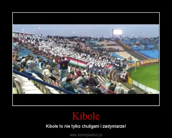 Kibole – Kibole to nie tylko chuligani i zadymiarze!