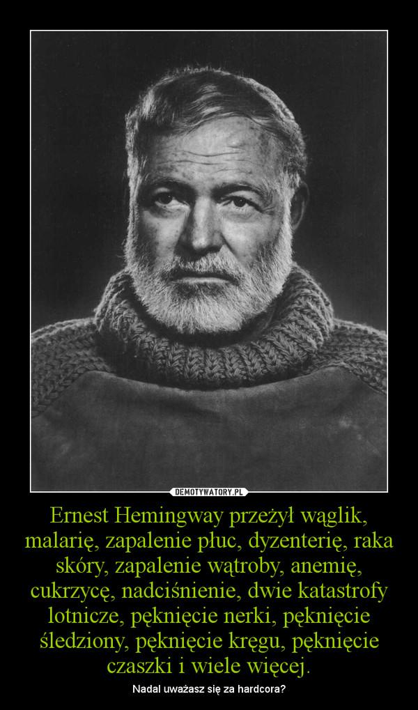 Ernest Hemingway przeżył wąglik, malarię, zapalenie płuc, dyzenterię, raka skóry, zapalenie wątroby, anemię, cukrzycę, nadciśnienie, dwie katastrofy lotnicze, pęknięcie nerki, pęknięcie śledziony, pęknięcie kręgu, pęknięcie czaszki i wiele więcej. – Nadal uważasz się za hardcora?