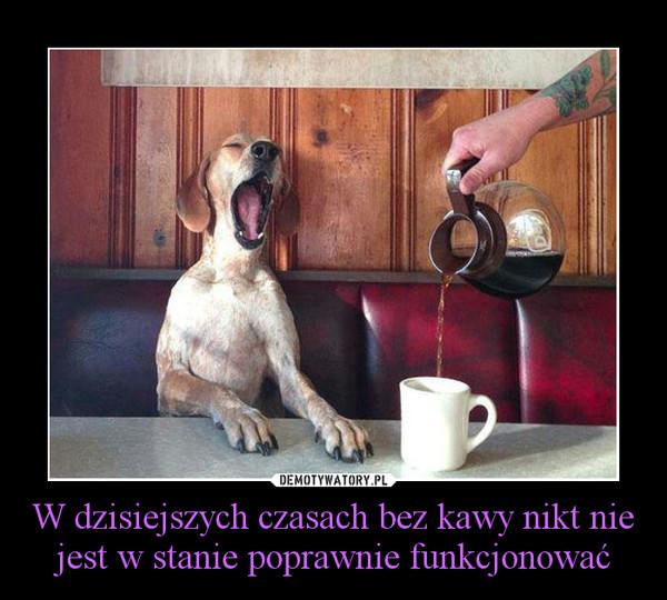W dzisiejszych czasach bez kawy nikt nie jest w stanie poprawnie funkcjonować –