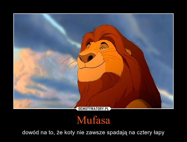 Mufasa – dowód na to, że koty nie zawsze spadają na cztery łapy