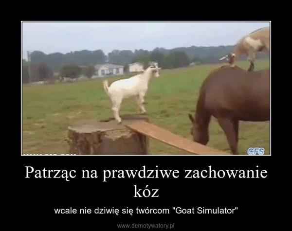 """Patrząc na prawdziwe zachowanie kóz – wcale nie dziwię się twórcom """"Goat Simulator"""""""
