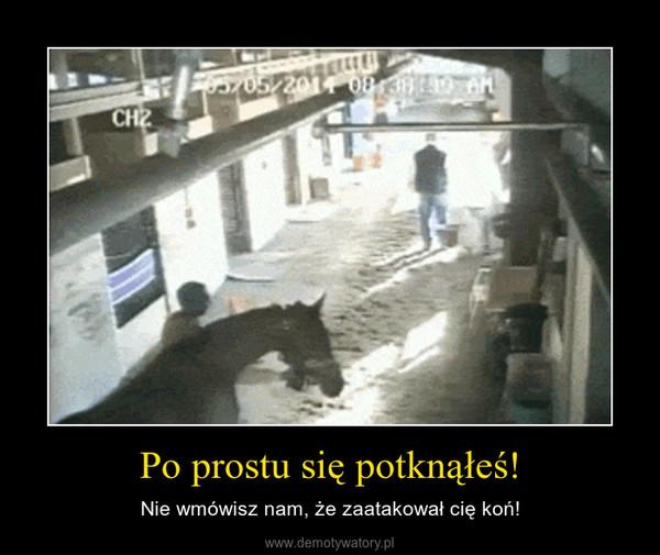 Po prostu się potknąłeś! – Nie wmówisz nam, że zaatakował cię koń!
