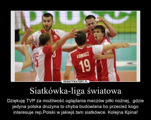 Siatkówka-liga światowa