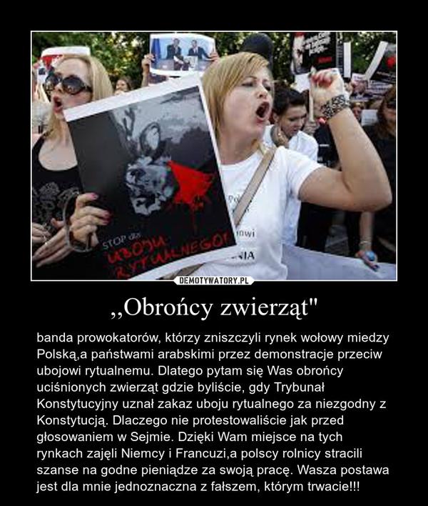 """,,Obrońcy zwierząt"""" – banda prowokatorów, którzy zniszczyli rynek wołowy miedzy Polską,a państwami arabskimi przez demonstracje przeciw ubojowi rytualnemu. Dlatego pytam się Was obrońcy uciśnionych zwierząt gdzie byliście, gdy Trybunał Konstytucyjny uznał zakaz uboju rytualnego za niezgodny z Konstytucją. Dlaczego nie protestowaliście jak przed głosowaniem w Sejmie. Dzięki Wam miejsce na tych rynkach zajęli Niemcy i Francuzi,a polscy rolnicy stracili szanse na godne pieniądze za swoją pracę. Wasza postawa jest dla mnie jednoznaczna z fałszem, którym trwacie!!!"""