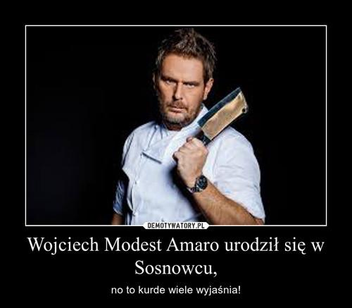 Wojciech Modest Amaro urodził się w Sosnowcu,