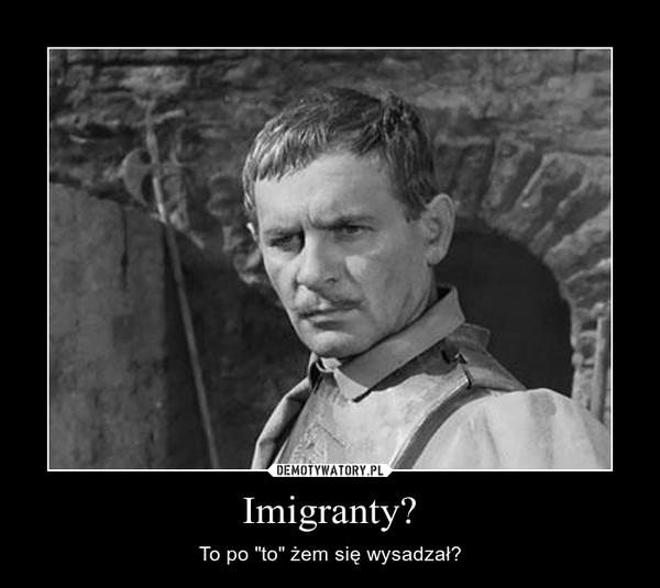 """Imigranty? – To po """"to"""" żem się wysadzał?"""