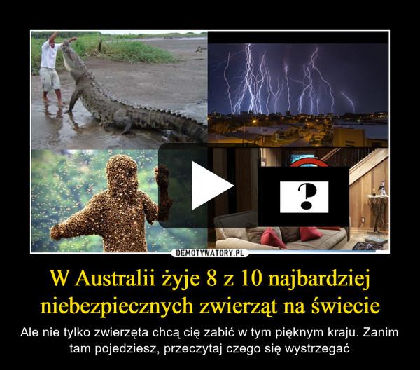 W Australii żyje 8 z 10 najbardziej niebezpiecznych zwierząt na świecie – Ale nie tylko zwierzęta chcą cię zabić w tym pięknym kraju. Zanim tam pojedziesz, przeczytaj czego się wystrzegać