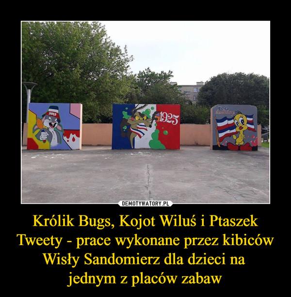 Królik Bugs, Kojot Wiluś i Ptaszek Tweety - prace wykonane przez kibiców Wisły Sandomierz dla dzieci na jednym z placów zabaw –