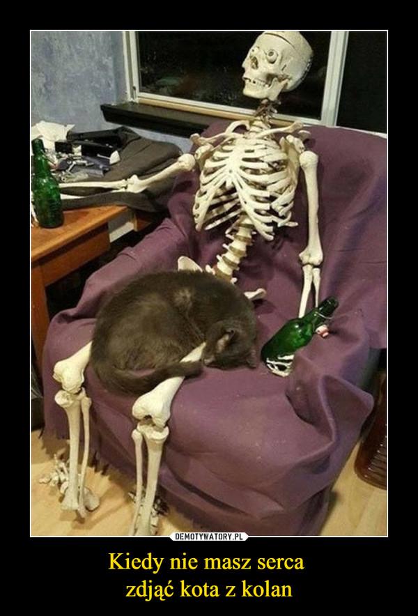 Kiedy nie masz serca zdjąć kota z kolan –