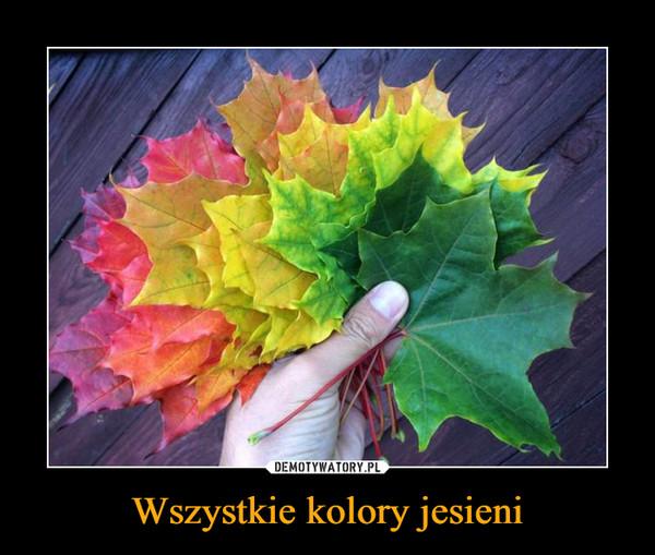 Wszystkie kolory jesieni –