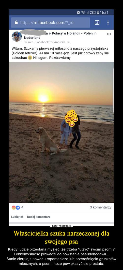 Właścicielka szuka narzeczonej dla swojego psa