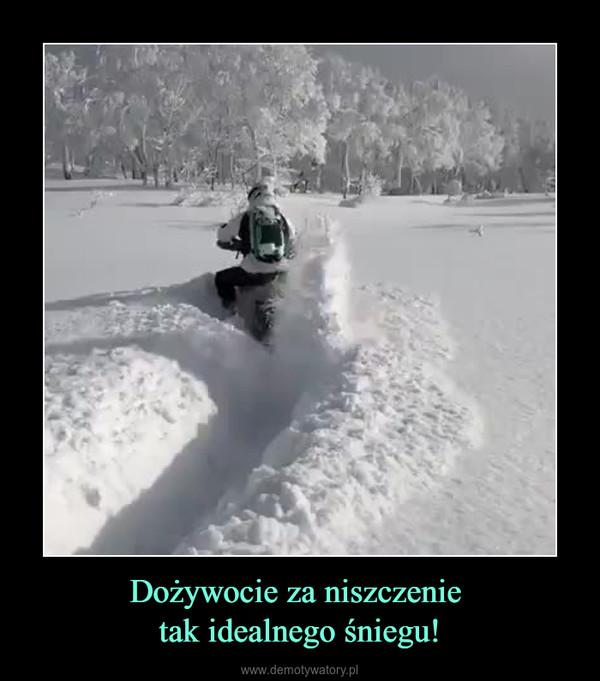 Dożywocie za niszczenie tak idealnego śniegu! –