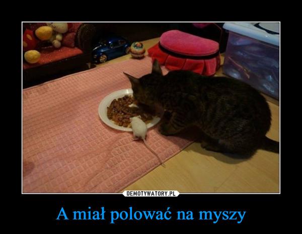 A miał polować na myszy –