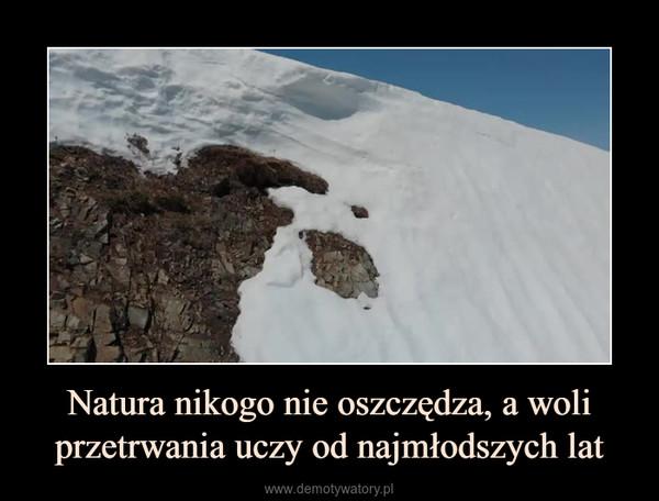 Natura nikogo nie oszczędza, a woli przetrwania uczy od najmłodszych lat –