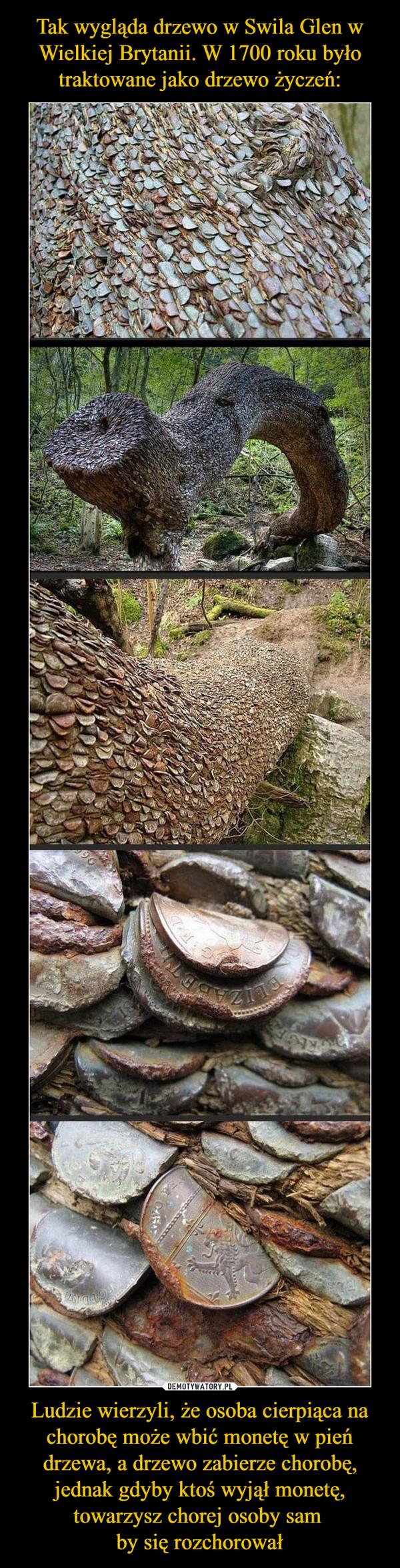 Ludzie wierzyli, że osoba cierpiąca na chorobę może wbić monetę w pień drzewa, a drzewo zabierze chorobę, jednak gdyby ktoś wyjął monetę, towarzysz chorej osoby sam by się rozchorował –