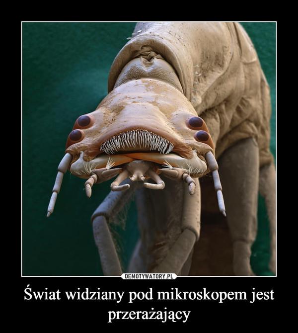 Świat widziany pod mikroskopem jest przerażający –