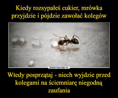 Kiedy rozsypałeś cukier, mrówka przyjdzie i pójdzie zawołać kolegów Wtedy posprzątaj - niech wyjdzie przed kolegami na ściemniarę niegodną zaufania