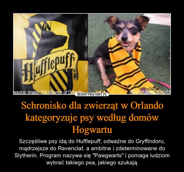 """Schronisko dla zwierząt w Orlando kategoryzuje psy według domów Hogwartu – Szczęśliwe psy idą do Hufflepuff, odważne do Gryffindoru, mądrzejsze do Ravenclaf, a ambitne i zdeterminowane do Slytherin. Program nazywa się """"Pawgwarts"""" i pomaga ludziom wybrać takiego psa, jakiego szukają"""