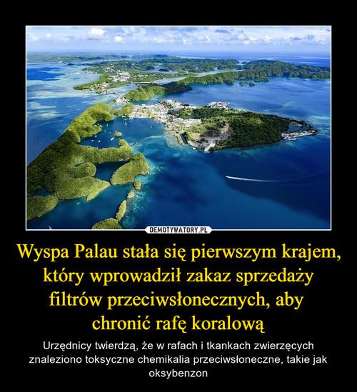 Wyspa Palau stała się pierwszym krajem, który wprowadził zakaz sprzedaży filtrów przeciwsłonecznych, aby  chronić rafę koralową