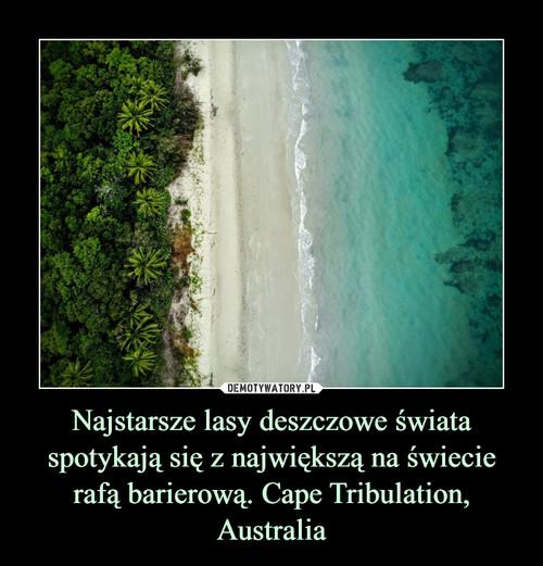 Najstarsze lasy deszczowe świata spotykają się z największą na świecie rafą barierową. Cape Tribulation, Australia