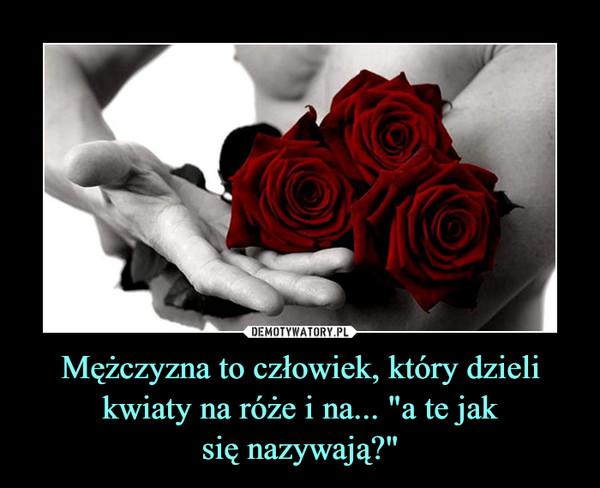 """Mężczyzna to człowiek, który dzieli kwiaty na róże i na... """"a te jaksię nazywają?"""" –"""