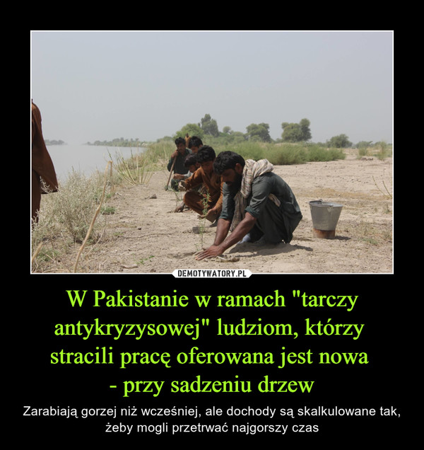 """W Pakistanie w ramach """"tarczy antykryzysowej"""" ludziom, którzy stracili pracę oferowana jest nowa - przy sadzeniu drzew – Zarabiają gorzej niż wcześniej, ale dochody są skalkulowane tak, żeby mogli przetrwać najgorszy czas"""