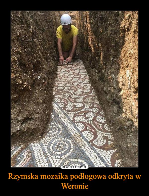 Rzymska mozaika podłogowa odkryta w Weronie –