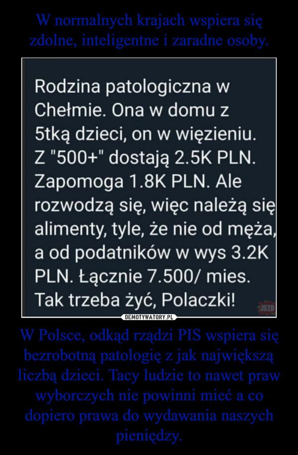 W Polsce, odkąd rządzi PIS wspiera się bezrobotną patologię z jak największą liczbą dzieci. Tacy ludzie to nawet praw wyborczych nie powinni mieć a co dopiero prawa do wydawania naszych pieniędzy. –