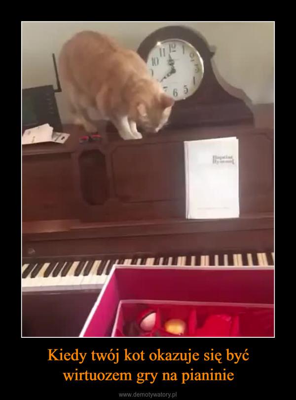 Kiedy twój kot okazuje się być wirtuozem gry na pianinie –