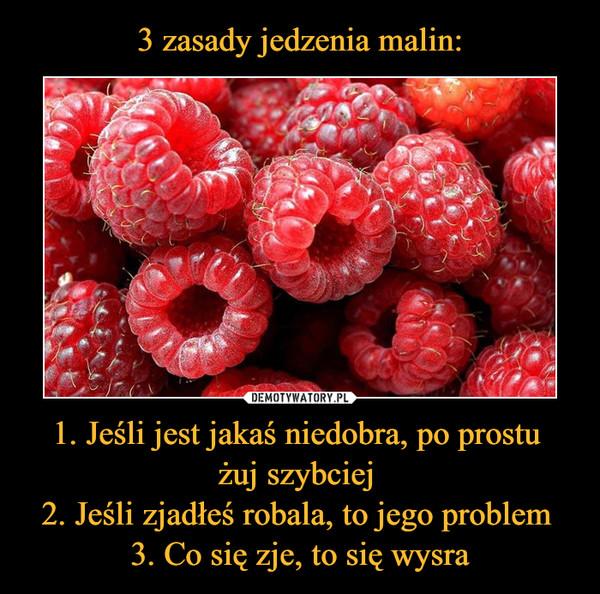 1. Jeśli jest jakaś niedobra, po prostu żuj szybciej 2. Jeśli zjadłeś robala, to jego problem 3. Co się zje, to się wysra –