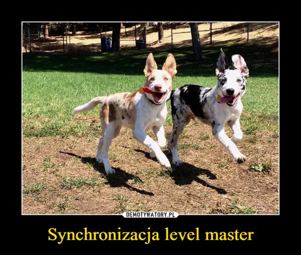 Synchronizacja level master –