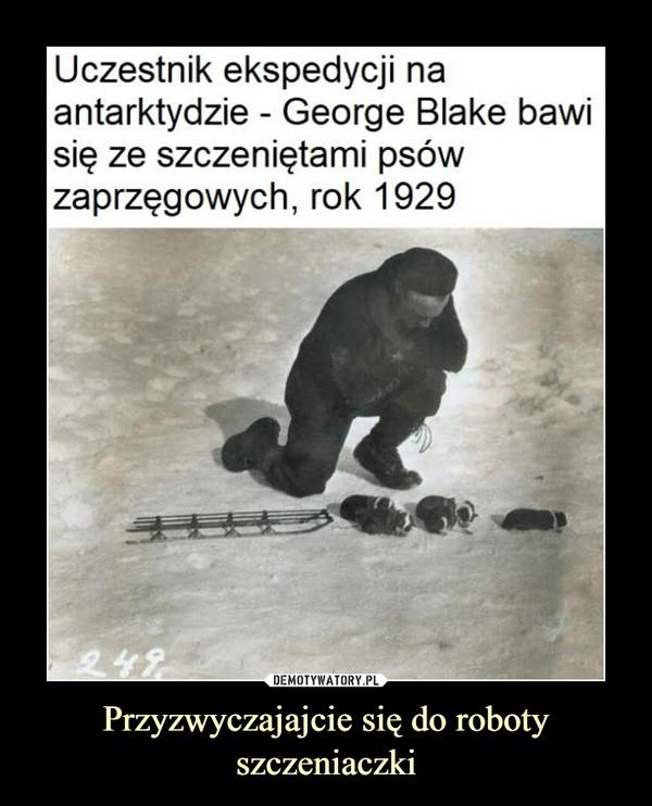 Przyzwyczajajcie się do roboty szczeniaczki –  Uczestnik ekspedycjiantarktydzie - George Blake bawisię ze szczeniętami psówzaprzęgowych, rok 1929na:249