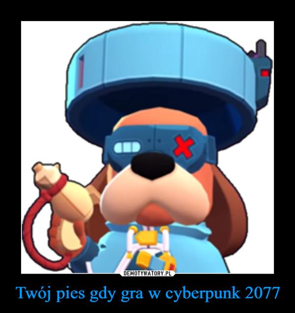 Twój pies gdy gra w cyberpunk 2077 –