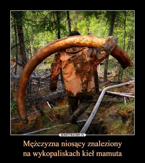 Mężczyzna niosący znaleziony na wykopaliskach kieł mamuta