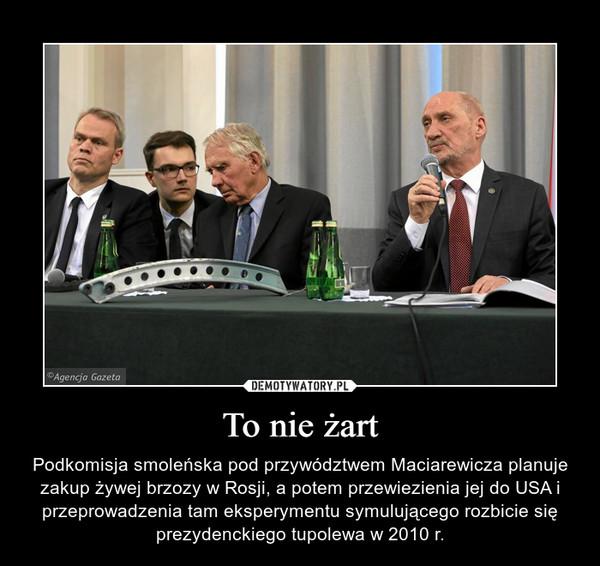 To nie żart – Podkomisja smoleńska pod przywództwem Maciarewicza planuje zakup żywej brzozy w Rosji, a potem przewiezienia jej do USA i przeprowadzenia tam eksperymentu symulującego rozbicie się prezydenckiego tupolewa w 2010 r.