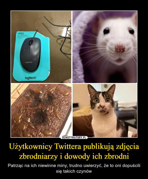 Użytkownicy Twittera publikują zdjęcia zbrodniarzy i dowody ich zbrodni