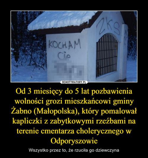 Od 3 miesięcy do 5 lat pozbawienia wolności grozi mieszkańcowi gminy Żabno (Małopolska), który pomalował kapliczki z zabytkowymi rzeźbami na terenie cmentarza cholerycznego w Odporyszowie