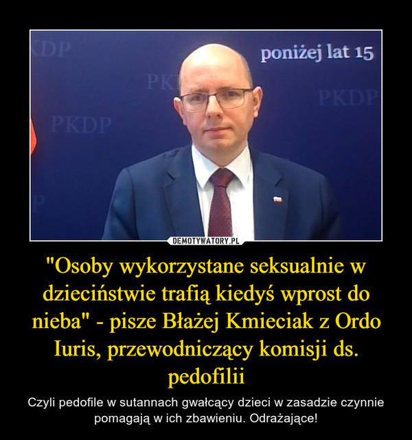 """""""Osoby wykorzystane seksualnie w dzieciństwie trafią kiedyś wprost do nieba"""" - pisze Błażej Kmieciak z Ordo Iuris, przewodniczący komisji ds. pedofilii – Czyli pedofile w sutannach gwałcący dzieci w zasadzie czynnie pomagają w ich zbawieniu. Odrażające!"""