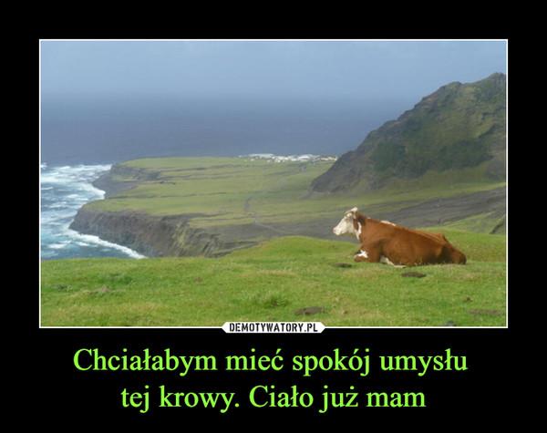 Chciałabym mieć spokój umysłu tej krowy. Ciało już mam –