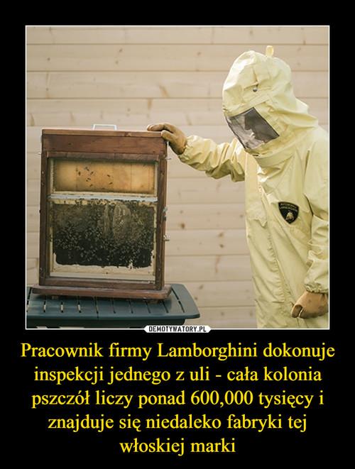 Pracownik firmy Lamborghini dokonuje inspekcji jednego z uli - cała kolonia pszczół liczy ponad 600,000 tysięcy i znajduje się niedaleko fabryki tej włoskiej marki