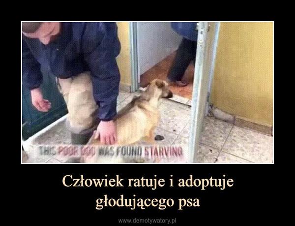 Człowiek ratuje i adoptujegłodującego psa –