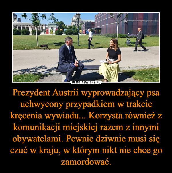 Prezydent Austrii wyprowadzający psa uchwycony przypadkiem w trakcie kręcenia wywiadu... Korzysta również z komunikacji miejskiej razem z innymi obywatelami. Pewnie dziwnie musi się czuć w kraju, w którym nikt nie chce go zamordować. –