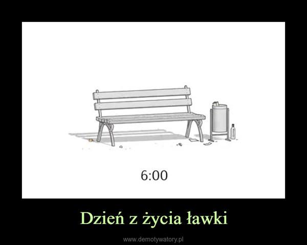 Dzień z życia ławki –