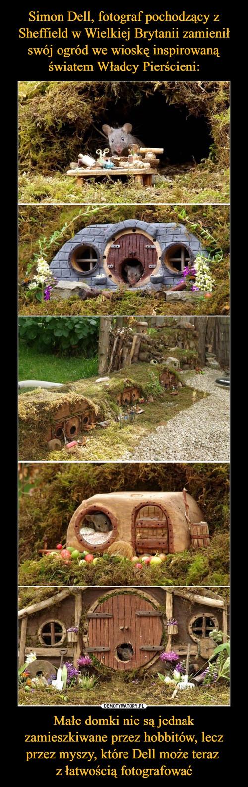Simon Dell, fotograf pochodzący z Sheffield w Wielkiej Brytanii zamienił swój ogród we wioskę inspirowaną światem Władcy Pierścieni: Małe domki nie są jednak zamieszkiwane przez hobbitów, lecz przez myszy, które Dell może teraz  z łatwością fotografować