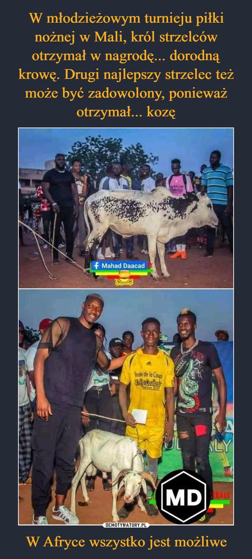 W Afryce wszystko jest możliwe –