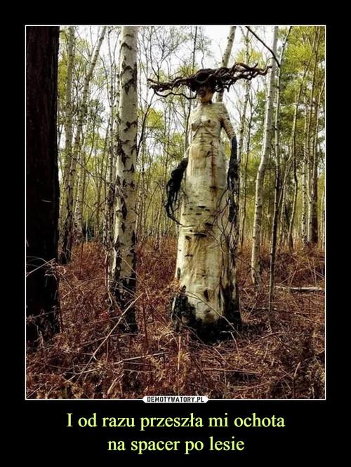 I od razu przeszła mi ochota na spacer po lesie