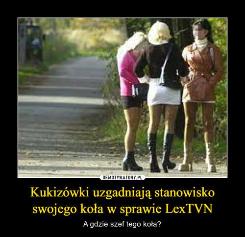 Kukizówki uzgadniają stanowisko swojego koła w sprawie LexTVN