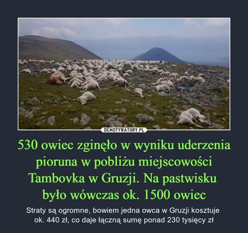 530 owiec zginęło w wyniku uderzenia pioruna w pobliżu miejscowości Tambovka w Gruzji. Na pastwisku  było wówczas ok. 1500 owiec